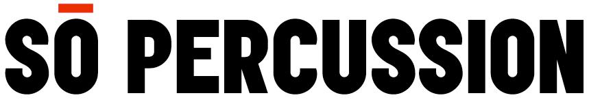 Sō Logo
